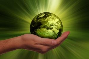 sustainability-3300869